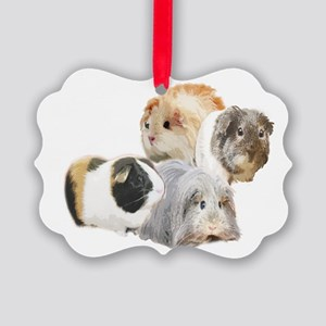 guinea pig kisses Picture Ornament