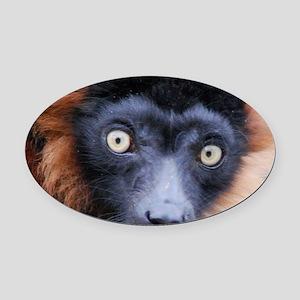 Red Ruffed Lemur Woven Blanket Oval Car Magnet