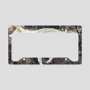 """Running  Arctic  Wolf"" License Plate Holder"