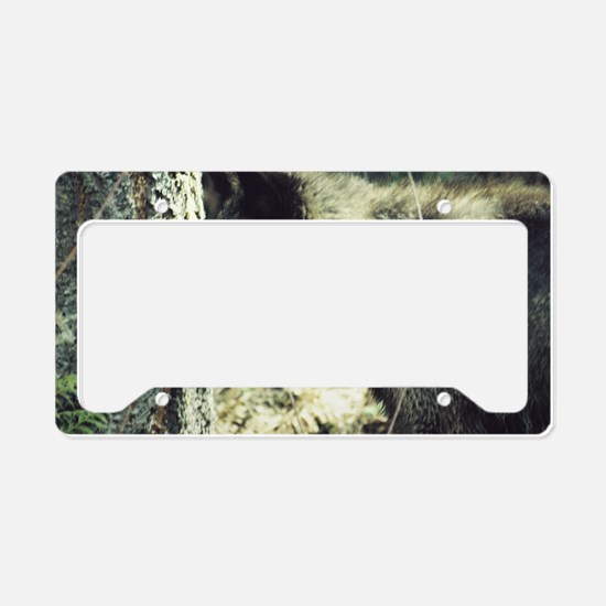 """Young  Black  Wolf"" License Plate Holder"