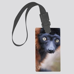 Red Ruffed Lemur iPhone/iTouch W Large Luggage Tag