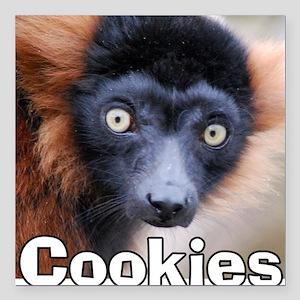 "Red Ruffed Lemur Cookie  Square Car Magnet 3"" x 3"""