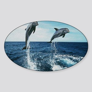 Twin Dolphins Sticker (Oval)