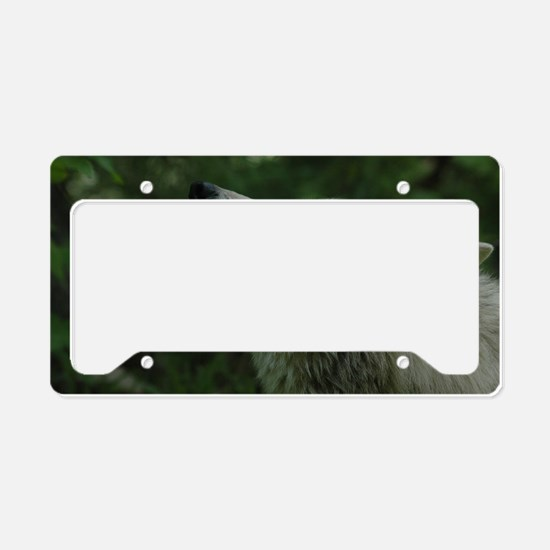 """""""I  Need  You"""" License Plate Holder"""