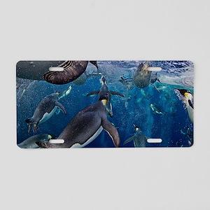 Emperor Penguins Rising Aluminum License Plate