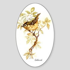 Goldcrest Peter Bere Design Sticker (Oval)