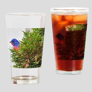 647_h_f Drinking Glass