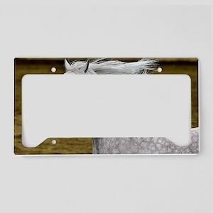 Arabian Horse License Plate Holder