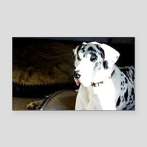 great dane, dog, harlequin Rectangle Car Magnet