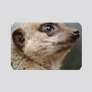 Meerkat Round Cocktail Plate Rectangle Magnet