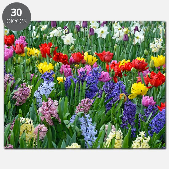 Spring garden flowers Puzzle