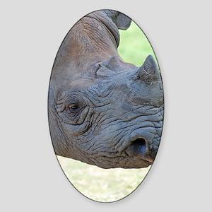 Black Rhino Clipboard Sticker (Oval)