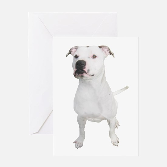 Unique Pit bull mom Greeting Card