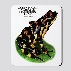 Costa Rican Variable Harlequin Toad Mousepad