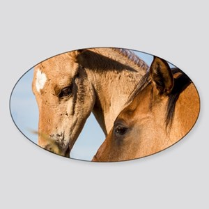 Song of the Horses -  The Thinking  Sticker (Oval)