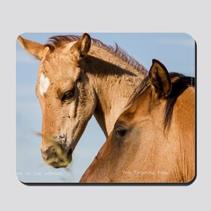 Song of the Horses -  The Thinking Foal Mousepad