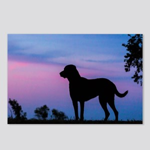 The Chessie Profile Postcards (Package of 8)