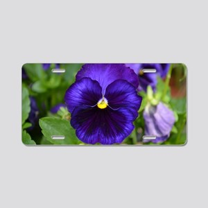 Pansy Aluminum License Plate