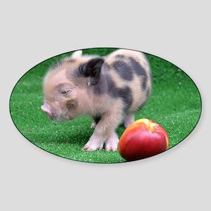 Peach as a Pig Sticker (Oval)