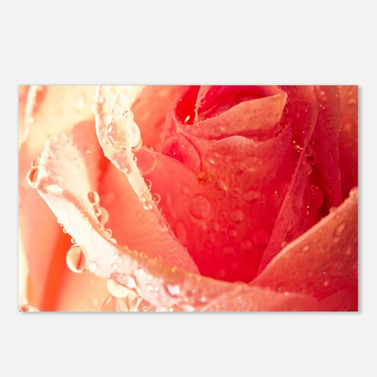 Raindrops On A Peach Tea  Postcards (Package of 8)