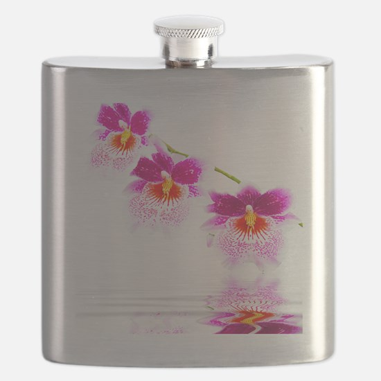 Three Oncidium Pink and White Orchids Flask