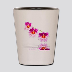 Three Oncidium Pink and White Orchids Shot Glass