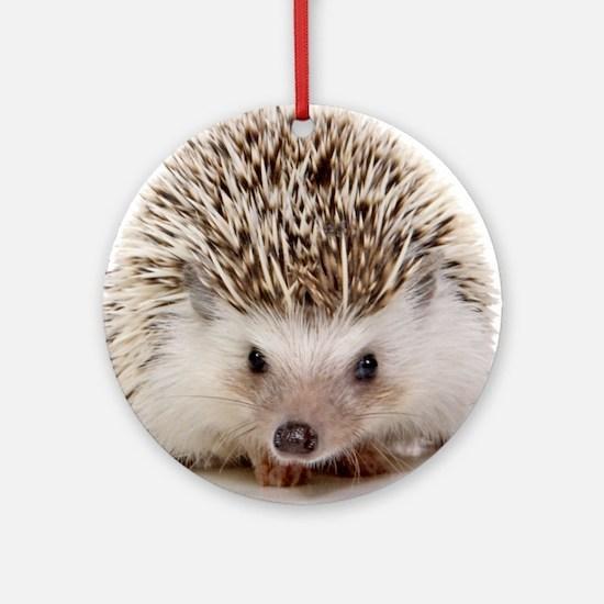 Rosie hedgehog Round Ornament