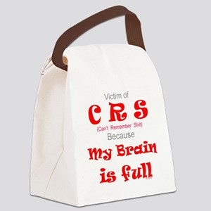 My Brain is Full-red Canvas Lunch Bag
