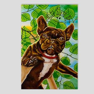 Dog King Mira Slava high Postcards (Package of 8)