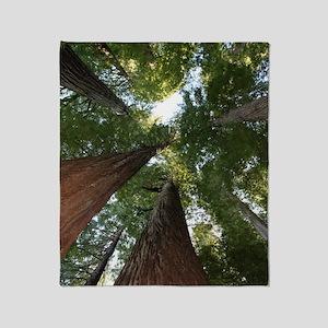 California Giant Redwoods Throw Blanket