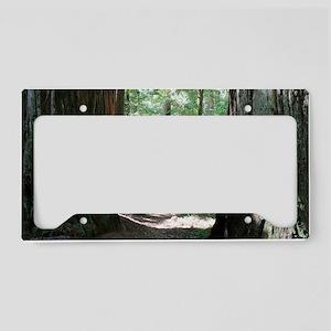 Trail - California Giant Redw License Plate Holder