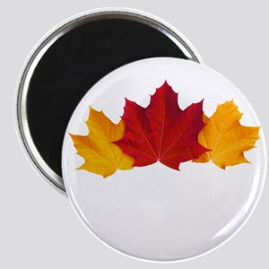 Canadian Maple Leaves Magnet
