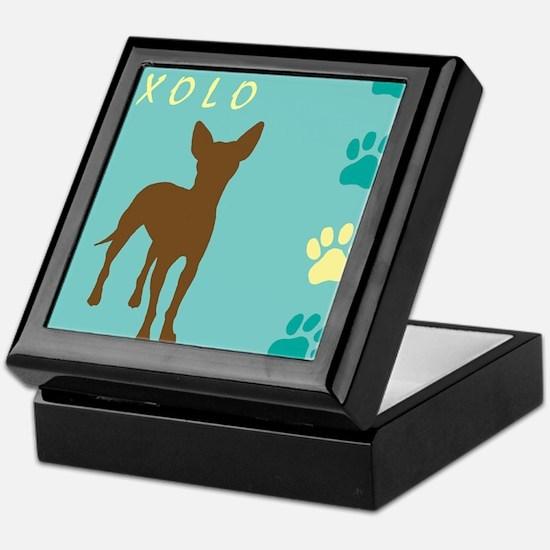 xoloitzcuintli paws Keepsake Box