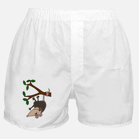 Possom Hanging from Tree Branch Boxer Shorts