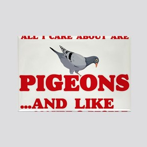 All I care about are Pigeons Magnets