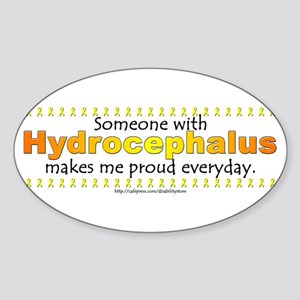 Hydrocephalus Pride Oval Sticker