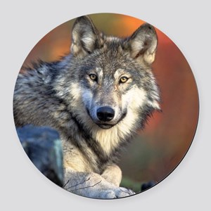 Wolf Wolves Lovers Round Car Magnet