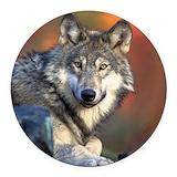 Wolf Round Car Magnets