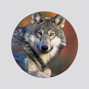 """Wolf Wolves Lovers 3.5"""" Button"""