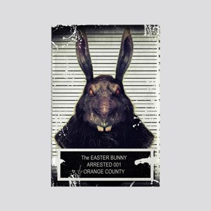 Evil Easter Bunny Rabbit SOLO Magnets