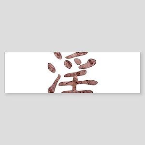 Kanji - obscene Bumper Sticker