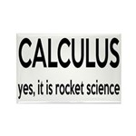 Calculus Is Rocket Science Rectangle Magnet (10 pa