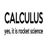 Calculus Is Rocket Science 35x21 Wall Decal
