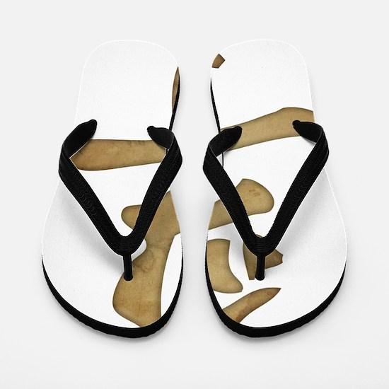 Kanji - Truth Flip Flops