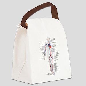 Circulatory System Canvas Lunch Bag