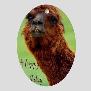 funny alpaca birthday Oval Ornament