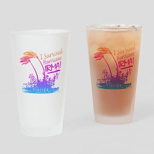 I Survived Hurricane Irma Drinking Glass