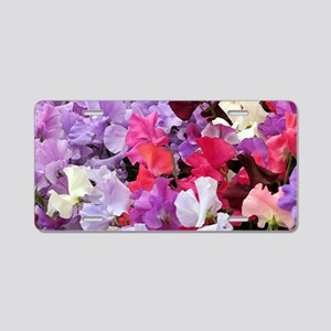 Sweet peas flowers in bloom Aluminum License Plate