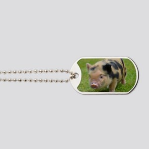 Little Spotty micro pig Dog Tags