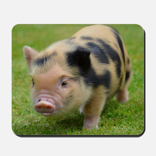 Little Spotty micro pig Mousepad